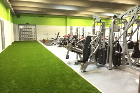 artificial+grass+sled+gym+cross+fit