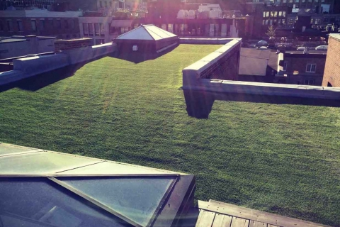 synthetic+grass+penthouse+montreal