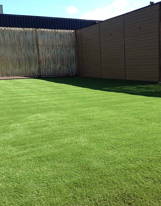 softlawn-artificial-grass-event-wedding-cheap-low-cost-short-fiber2