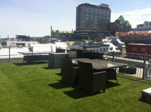 artificial grass rooftop
