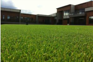 synthetic turf calgary