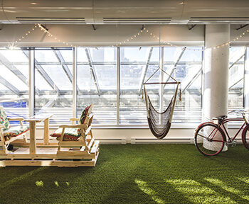 synthetic+grass+office+wall+toronto
