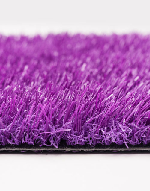 purple turf