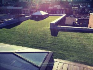 synthetic grass penthouse canada montreal