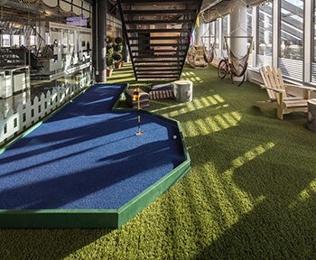 Artificial grass for office