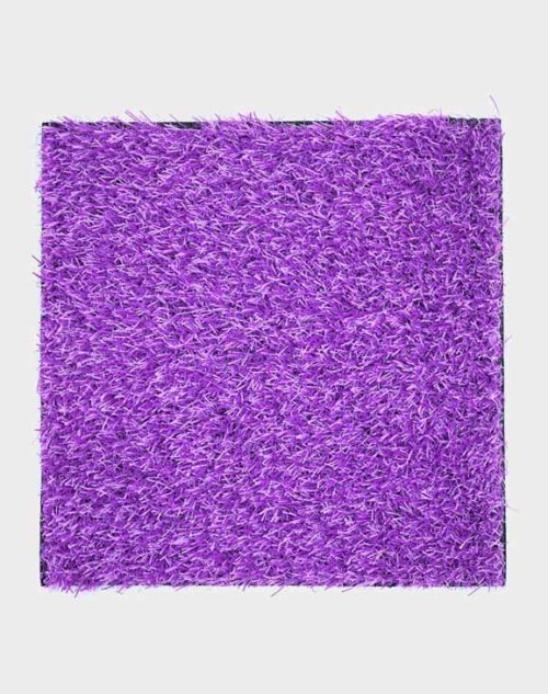 purplewhite-turf-playgrounds-kindergarten-play-areas-indoor-carpets
